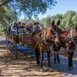 Horse Carriage with passengers